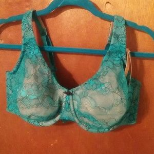 Teal lace over beige bra